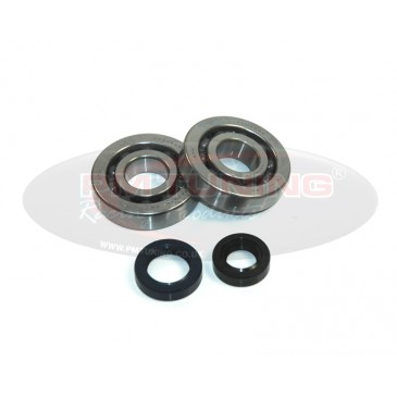 Top Racing Bearing and Seal Kit For Peugeot 50cc