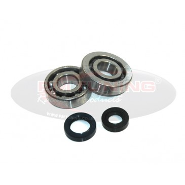 Top Racing Bearing and Seal Kit For Peugeot Speedfight 2 50cc