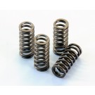POLINI INLET & EXHAUST VALVE SPRINGS GTS300